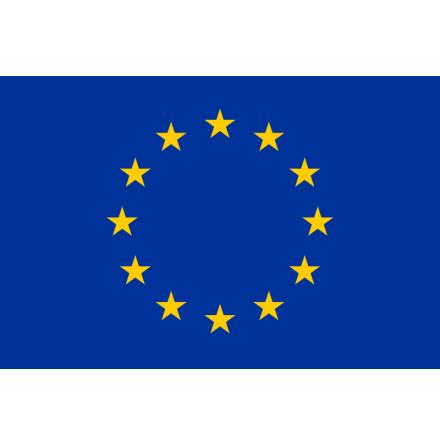 EU flagga (150 - 400 cm)