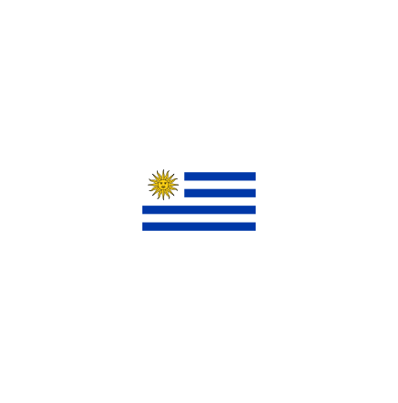 Uruguay 16 cm Bordsflagga