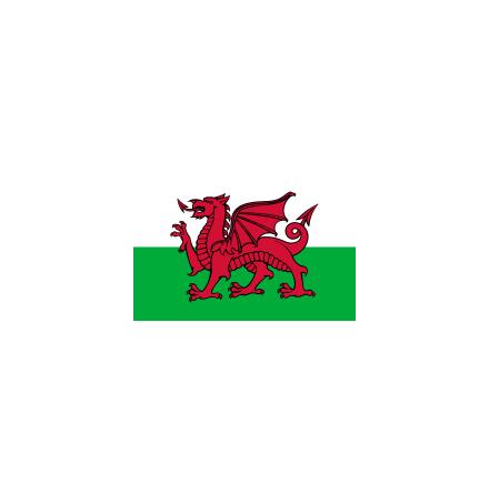 Wales 300 cm