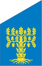 Blekinge fasadflagga 80 cm