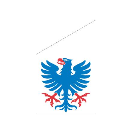 Värmland fasadflagga 75 cm