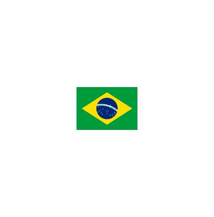 Brasilien 24cm Bordsflagga