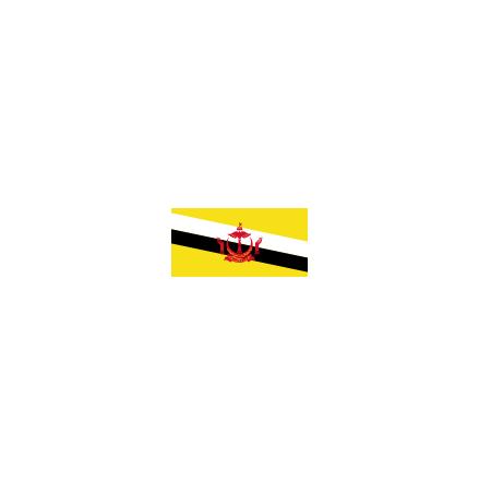 Brunei 16 cm Bordsflagga