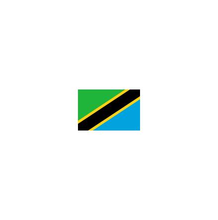 Tanzania 16 cm Bordsflagga