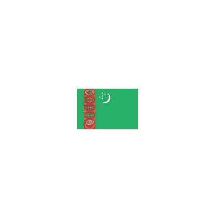 Turkmenistan 24 cm Bordsflagga